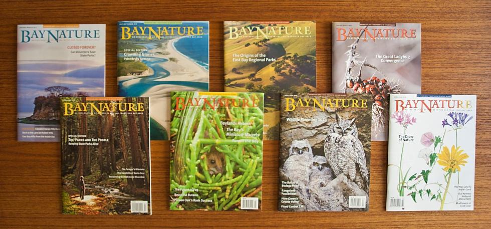 Bay Nature Magazines