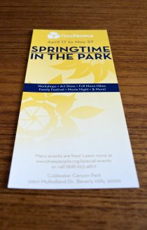 Springtime in the Park: Rack Card (Front)