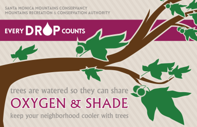 Every Drop Counts: Oxygen & Shade