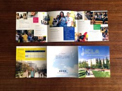 UCLA Housing & Residential Life Brochure Inside and Outside